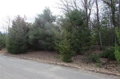Wurtsboro Residential Lots & Land For Sale: Mountain Top Road