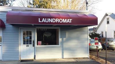 New City Commercial For Sale: 104c Maple Avenue