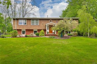 Rockland County Single Family Home For Sale: 6 Ackerman Avenue