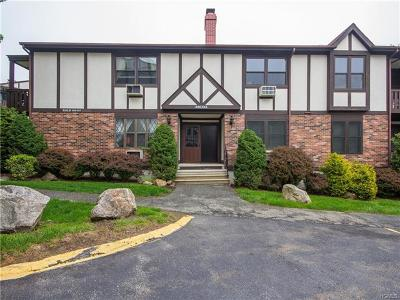 Rockland County Condo/Townhouse For Sale: 336 Sierra Vista Lane