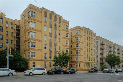 Co-Operative For Sale: 2166 Bronx Park East #3-G