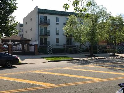 Condo/Townhouse For Sale: 195 Balcom Avenue #2F