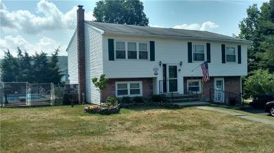 Washingtonville Single Family Home For Sale: 4 Capital Drive