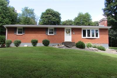 Pine Bush Single Family Home For Sale: 146 Mountain Road