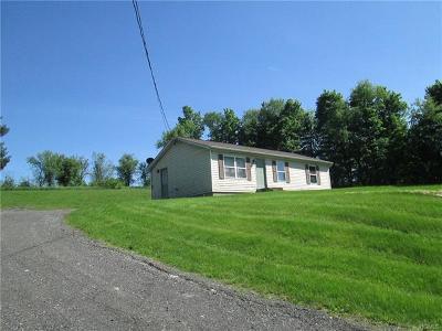 Goshen Single Family Home For Sale: 894 Pulaski Highway