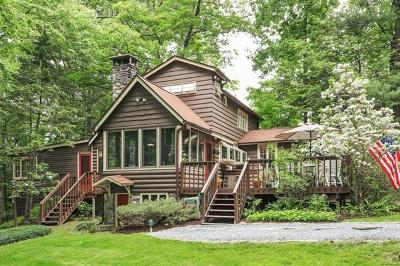 Putnam County Single Family Home For Sale: 29 High Indian Hill Road