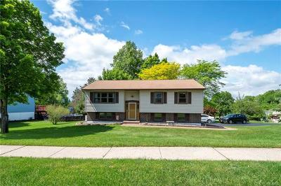 Washingtonville Single Family Home For Sale: 7 Valley Forge Way