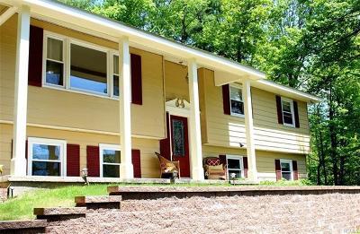 Wurtsboro Single Family Home For Sale: 123 Phillipsport Road