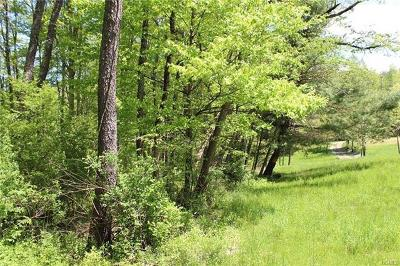Wurtsboro Residential Lots & Land For Sale: Phillipsport Road