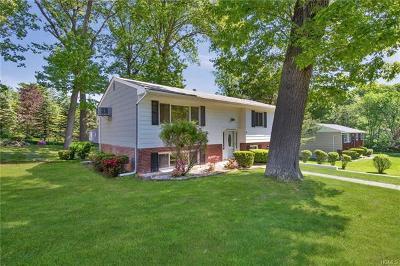 Single Family Home For Sale: 100 Amory Avenue