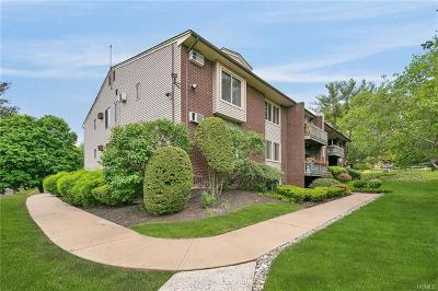 Rockland County Condo/Townhouse For Sale: 67 Country Club Lane