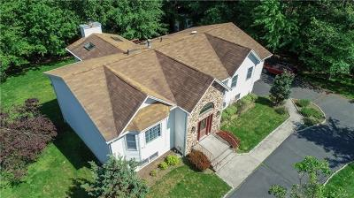 Valley Cottage Single Family Home For Sale: 17 Flower Lane