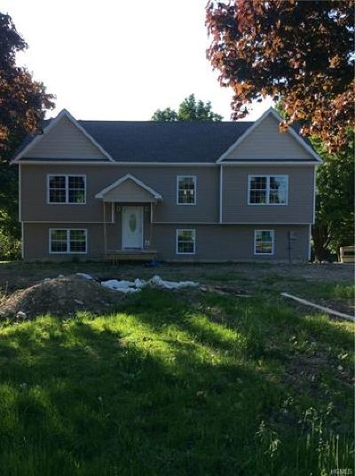 New Hampton Single Family Home For Sale: 877 County Route 12