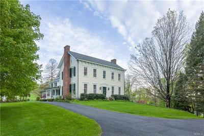 Chatham Single Family Home For Sale: 478 County Route 13