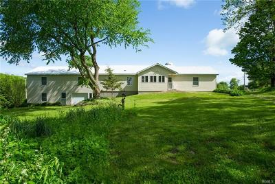 Dover Plains Single Family Home For Sale: 384 Poplar Hill Road