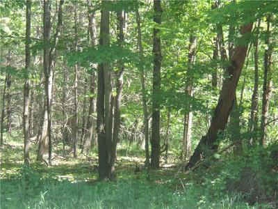 Residential Lots & Land For Sale: 808 Us Route 209