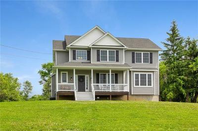 Goshen Single Family Home For Sale: 228 Phillipsburg Road
