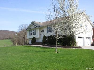 Washingtonville Single Family Home For Sale: 56 Woodcock Mtn Road