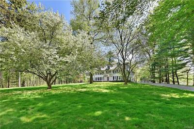 Bedford Hills Single Family Home For Sale: 54 West Patent Road