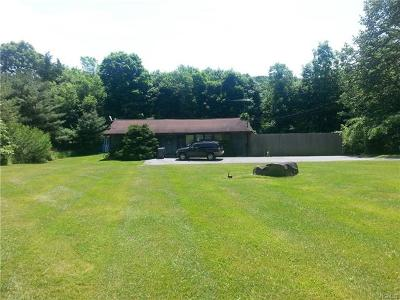 Westtown Single Family Home For Sale: 838 Route 284