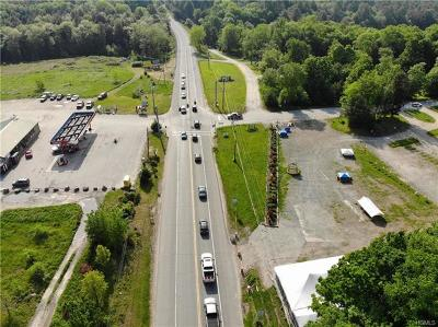 Residential Lots & Land For Sale: 1319 Nys Hwy 17b