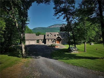 New Paltz NY Single Family Home For Sale: $729,999