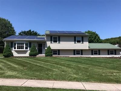 Washingtonville Single Family Home For Sale: 72 Decker Drive