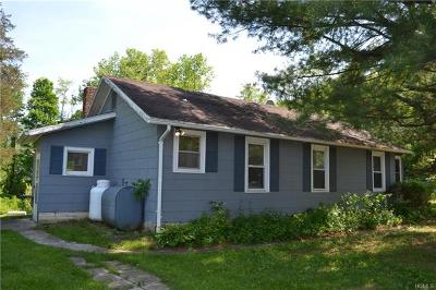 Wingdale Single Family Home For Sale: 66 Old State Route 22