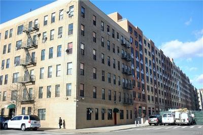 Co-Operative For Sale: 823 East 147th Street #51