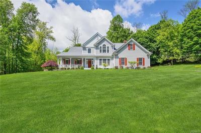 Goshen Single Family Home For Sale: 4 Lisa Lane