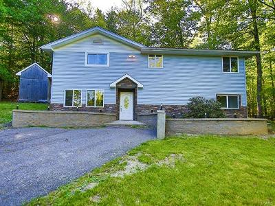 Pine Bush Single Family Home For Sale: 6 Jaffee Road