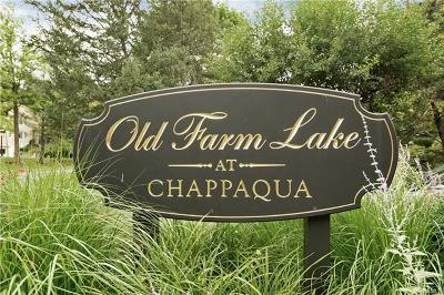 Chappaqua Condo/Townhouse For Sale: 138 Deer Run