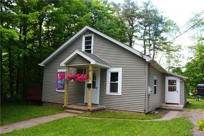 Ellenville Single Family Home For Sale: 36 Chapel Street