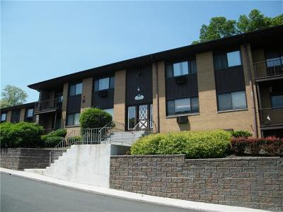 Piermont NY Condo/Townhouse For Sale: $169,900