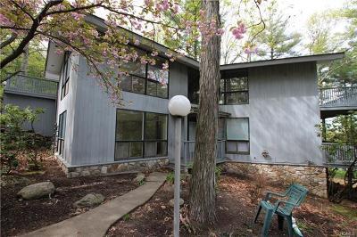 Ellenville Single Family Home For Sale: 9 Diane Drive