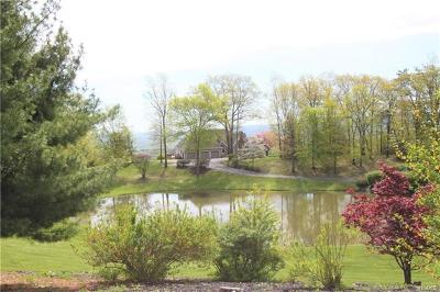 Newburgh Single Family Home For Sale: 56 Far Horizons Drive