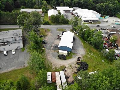Fallsburg Commercial For Sale: 5334 St Hwy 42