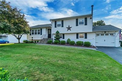 Washingtonville Single Family Home For Sale: 19 Newcastle Drive