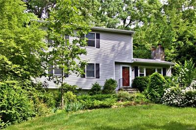 Dutchess County Single Family Home For Sale: 1 Holiday Street