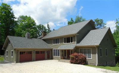 Sullivan County Single Family Home For Sale: 865 Pine Kill Road