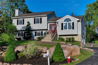 Highland Mills Single Family Home For Sale: 7 Franklin Drive