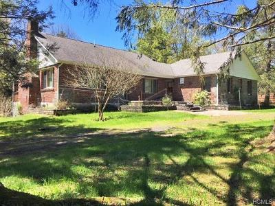 Barryville Single Family Home For Sale: 157 Yulan Barryville Road
