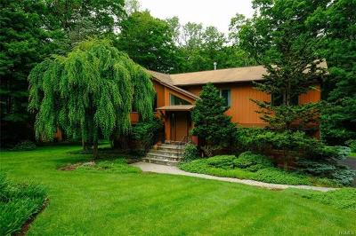 Rockland County Single Family Home For Sale: 29 Eagle Street