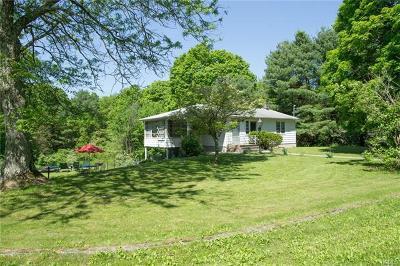 Wingdale Single Family Home For Sale: 103 Lake Ellis Road