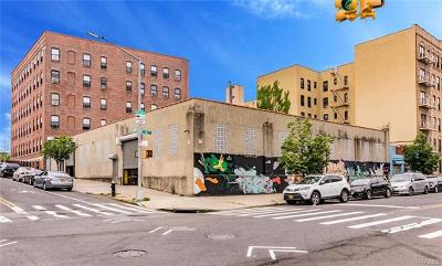 Bronx Commercial For Sale: 315 Jackson Avenue
