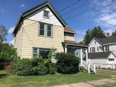 Port Jervis Single Family Home For Sale: 14 Neversink Avenue