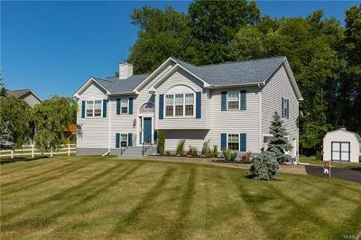 Dutchess County Single Family Home For Sale: 193 Robinson Lane