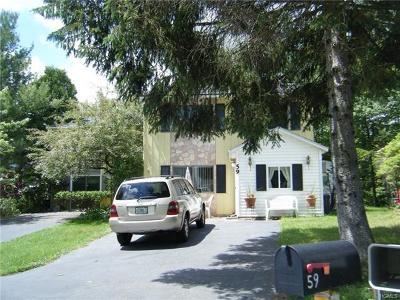 Sullivan County Single Family Home For Sale: 59 Medallion Road
