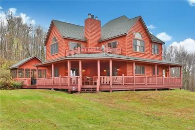 Sullivan County Single Family Home For Sale: 987 Hurd Road