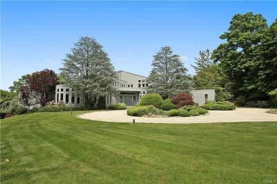 Armonk Single Family Home For Sale: 9 Wampus Lake Drive